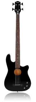 Black Acoustic Bass